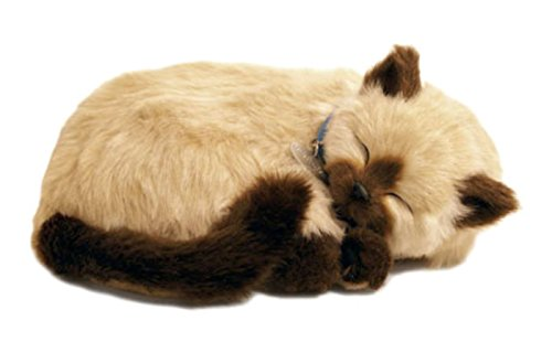 Perfect Petzzz Gato Siamese de peluche, que respira