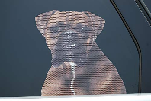 Realistic See-Through Life-Size Weatherproof Exterior Dog Decal for car Truck Home or Business Window - Boxer