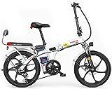 MQJ Ebikes Bicicleta Eléctrica de 20 Pulgadas para Adultos, Bicicleta Eléctrica de Desplazamiento con Batería Extraíble de 48V, Motor sin Esillas 250W, Instrumento Digital Lcd, Bicicleta Eléctrica Pl
