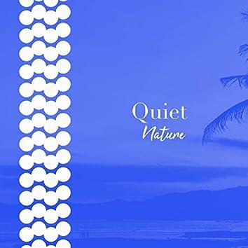 # 1 Album: Quiet Nature