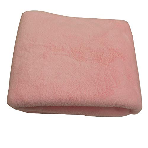 24V Car elektrische deken, Plus Velvet Warm Electric pincet, Truck Sleeper Verwarming Pad, Timing Winter Verwarming Warm Kussen, sigarettenaansteker Interface, zich prettig voelen (Color : Pink)
