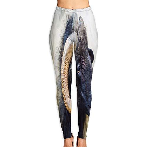 YMWEI Pantalón de Yoga Mujer Retrato Abrigo de Lana de Carnero Alta Cintura Pilates Fitness Leggings para Entrenamiento y Correr-L