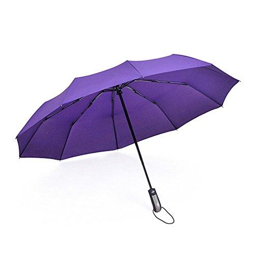 Brookfendi Paraguas Plegable Triple para Lluvia y Sol, 10 Varillas, para Hombres y Mujeres, Paraguas Reforzado, Morado (Morado) - ZM1154602