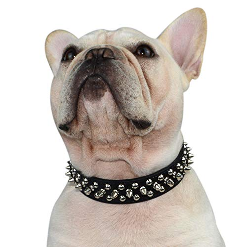 Hifrenchies Hundehalsband mit Nieten, Pilz-Nieten, verstellbar, Mikrofaser-Leder, Haustier-Halsbänder für Französische/Bulldogge/Mops, geeignet für kleine, mittelgroße und große Hunde (XL, schwarz)