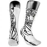 XCNGG Calcetines de compresión media pantorrilla calcetín, boceto de un tigre posando ojos afilados más grande especie de gato arte de rayas verticales oscuras