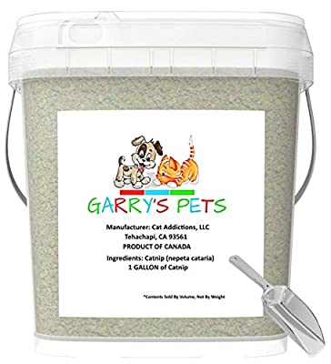 Garry's Pets Catnip Maximum Potency Premium Blend Cat Nip That Your Cats Will Go Crazy Over (1 Gallon Bucket)