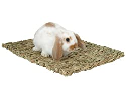 Rabbit scratching grass mat