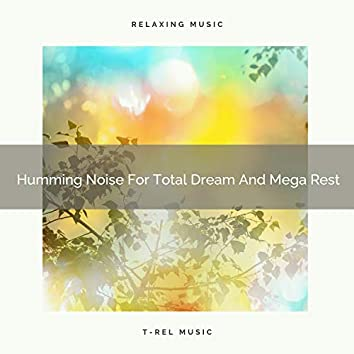 Humming Noise For Total Dream And Mega Rest