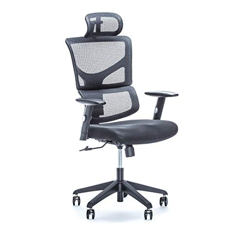 X Chair Executive Office Desk Chair (X-Basic) with Executive Headrest and Lumbar Support, Heavy Duty Rolling Wheels - Breathable Mesh Cushion - Adjustable Arms, Swivel Gaming Computer Chair chair gaming
