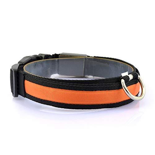 XIEJ LED-Hundehalsband, leuchtende Hundehalsbänder, Leuchthalsband Verbesserte Sicherheit und Sichtbarkeit von Haustieren bei Nacht, beleuchtetes Hundehalsband für die Nacht