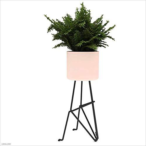 HCYTPL Bloemenstandaard, ijzeren bloemenstandaard, voor op het balkon, in de woonkamer