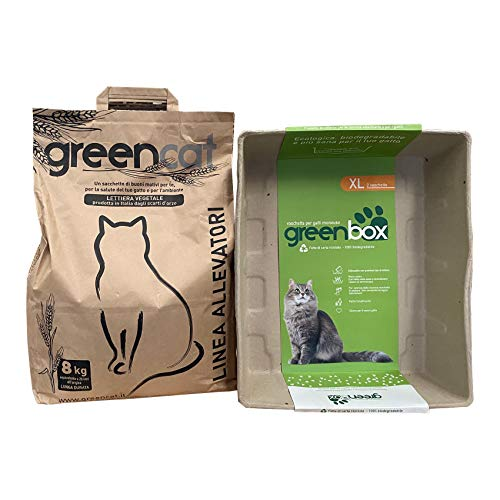 Greencat lettiera per Gatti a Base d'orzo 20 Litri (8 kg) + Greenbox Vaschetta per Gatti Monouso, XL (2 Pezzi)