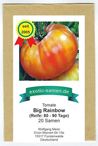 Zweifarbige, große Fleischtomate - süßer Geschmack - Big Rainbow - 20 Samen