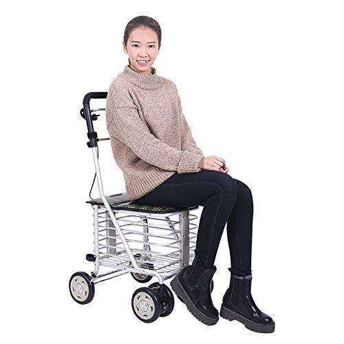 Zjyfyfyf Shopping Trolleys Einkaufswagen Ältere Walker Tragbare Trolley Kann A Nehmen Faltbaren Rollstuhl 6 Fahrbare Trolleys Geschenk Can Bär 100 Kg (Farbe : Grün)