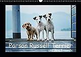 Parson Russell Terrier (Wandkalender 2020 DIN A3 quer)