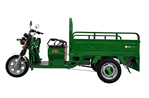 GinkGo C1 E-Cargo-Trike grün...