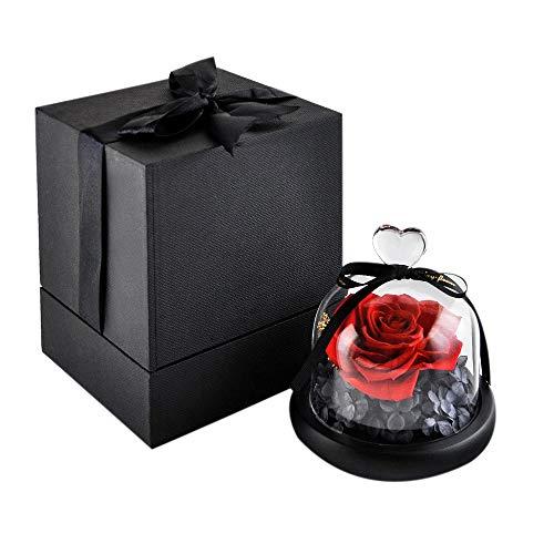 Eternal Rose- Preserved Flower Rose Handmade Fresh Flower Rose with Beautiful Creative Heart Design Gift for Valentine