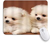 NIESIKKLAマウスパッド 動物の子犬ポメラニアンカップル ゲーミング オフィス最適 高級感 おしゃれ 防水 耐久性が良い 滑り止めゴム底 ゲーミングなど適用 用ノートブックコンピュータマウスマット