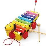 All'inizio Melody xilofono di Legno del Martello g Legno Xilofono Percussioni educativi Musica Giocattolo del Bambino Strumenti Musicali Xylophone Battere Giocattoli Musicali