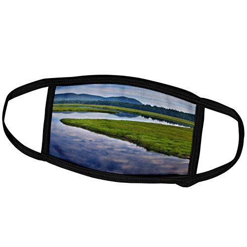 3dRose Bass Harbor Marsh, Acadia National Park, Maine - US20 CHA0019 -. - Face Covers (fc_90621_3)