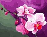 Pintar por Numeros Adultos, Ono Hana Pinceles y Pinturas Decoraciones, DIY Pinturas para el Hogar (16 * 20 Pulgadas, Sin Marco)