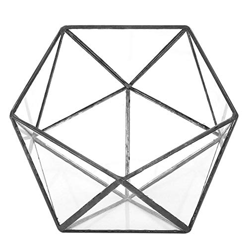 Terrario geométrico,Contenedor artístico de macetas de vidrio geométrico, Terrario de plantas para suculentas Plantas de helechos de musgo, Decoración del paisaje de la oficina en el hogar,17x17x16cm