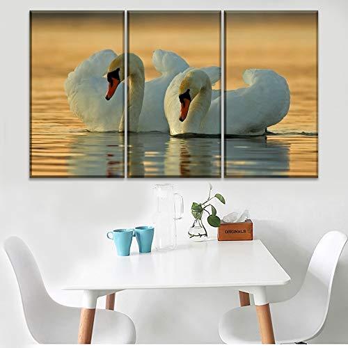 RHBNVR Canvas Schilderij Modern Artwork Modular Picture 3 stuks Animal Mute Swan Water Reflexion Canvas Schilderij Decor Frame (zonder lijst)