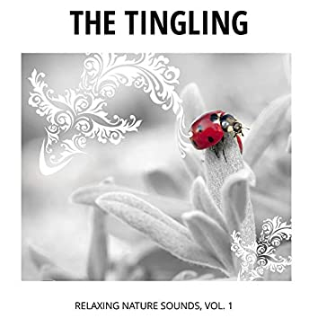 The Tingling - Relaxing Nature Sounds, Vol. 1