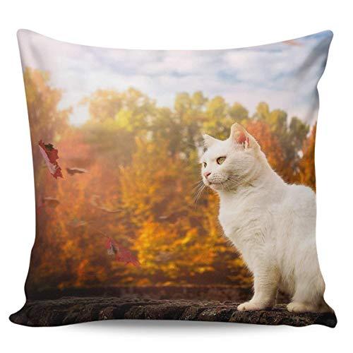 Copridivani Fodera per cuscino di tiro Gatto bianco e foglie d'autunno Decorative PiCasi bassi 45 X 45CM