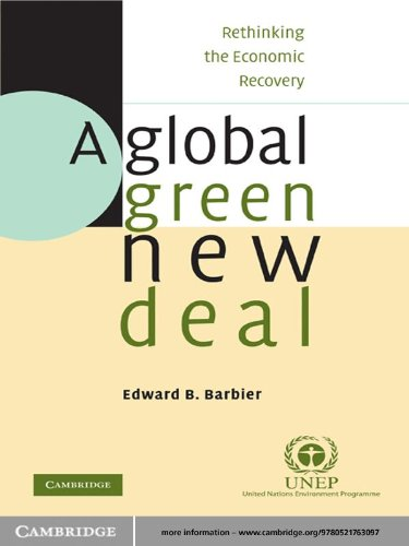 A Global Green New Deal: Rethinking the Economic Recovery