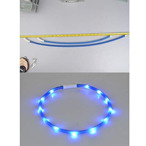 Hemore Collar para Perro LED, Recargable por USB, Collar para Mascota con luz de Noche para Perros pequeños, medianos, Grandes, Azules