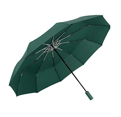 BLACK ELL Reisen automatischer Regenschirm,Reise Kompakt Hochwertiger Umbrella,Automatischer übergroßer Regenschirm, einfacher Regen oder Regenschirm-D_10 Aktien