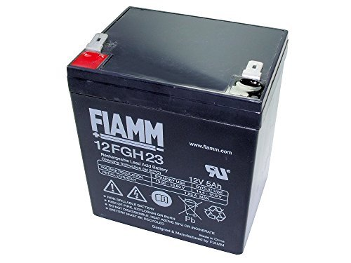 FIAMM 12FGH23 5Ah 12V batteria UPS