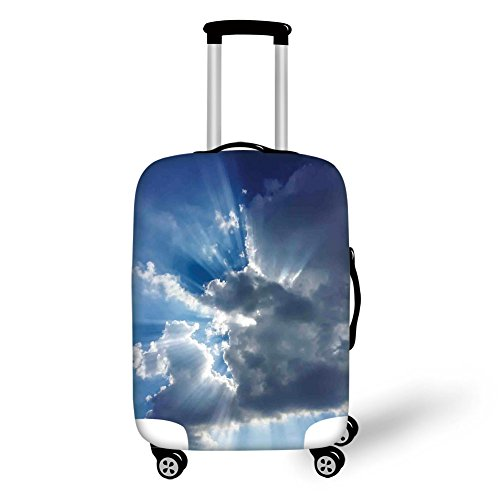 Travel Luggage Cover Suitcase Protector,Anemone Field in Full Blossom May Flower