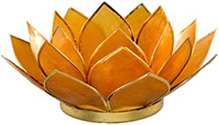 Amber Capiz Shell Lotus Flower Tea light Holder with Free Candle