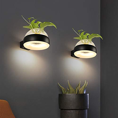 Eleyho Led-wandlamp, 12 W, wandlamp met glazen vaas voor slaapkamer, club, decoratie in de woonkamer (plant is niet inbegrepen)