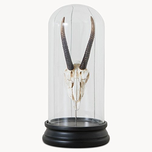 Pretty Maison Antelope Cloche (Resina)