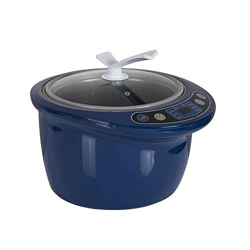 6L Negro ajo fermentador de gran capacidad de bricolaje Home Smart Auto Fermentación máquina inteligente de control de Natto vino fabricante de yogur (Color: A) (Color: A) zhuang94 ( Color : A )