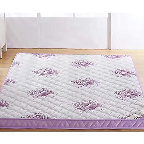 Inicio Equipos Colchón de látex natural de tamaño completo Colchón de espuma viscoelástica El diseño ergonómico de tatami grueso puede aliviar el dolor de espalda Púrpura 6 cm de espesor 120x200 cm