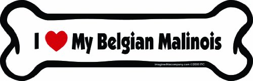 Imagine This Bone Car Magnet, I Love My Belgian Malinois, 2-Inch by 7-Inch