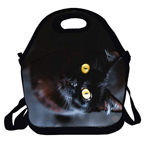 Cool-cat -1 lunchtas - Halloween geïsoleerde lunchtas - thermische lunchtas - waterbestendige lunchtas en voedselcontainer, ideaal voor op reis, werk, volwassenen, kinderen
