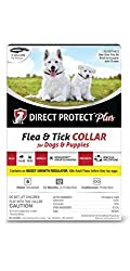 Direct Protect Plus Flea & Tick Collars for Dogs & Puppies, One Size Fits All, 2-Pack, 12 Months Protection
