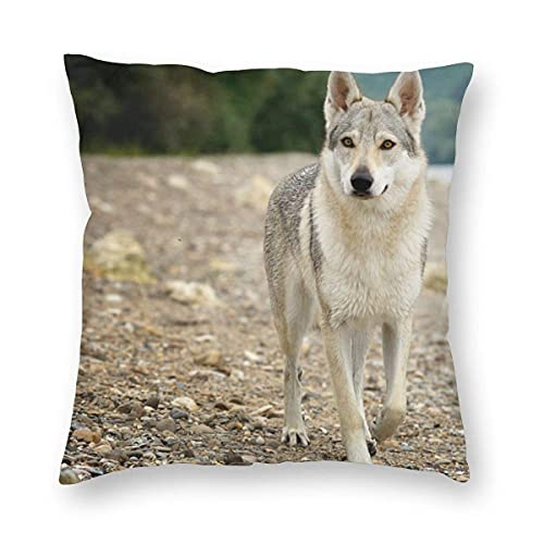 HZLM Wolf Running - Funda de cojín (algodón, 45 x 45 cm), diseño cuadrado