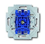 Busch-Jaeger 2000/2 UK Interruptor
