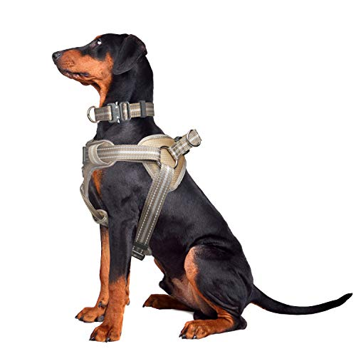 WINSEE Dog Harness and Collar Set for Large Dogs, Reflective Adjustable Step in Dog Halter Harnesses no Pull with Cobra Buckle Dog Collar Heavy Duty, Soft Padded Pet Vest Walking Harness Brown camo