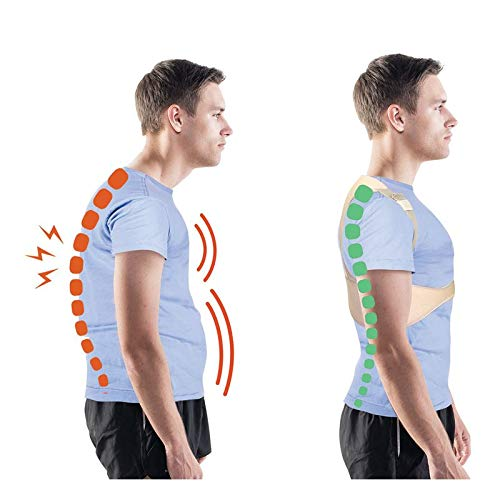 Begradigt Rücken Comfortisse Haltungsgröße L / XL - 3