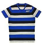 AEROPOSTALE Men's Graphic V-Neck T-Shirt Small Blue Black Gray 8413