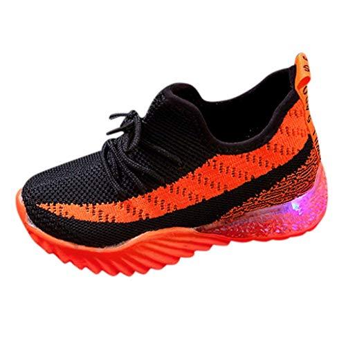 Luckycat Zapatillas de Deporte Niños Zapatillas para niños con LED Luminoso Zapatillas para bebés y niños pequeños Zapatillas para niños Outdoor