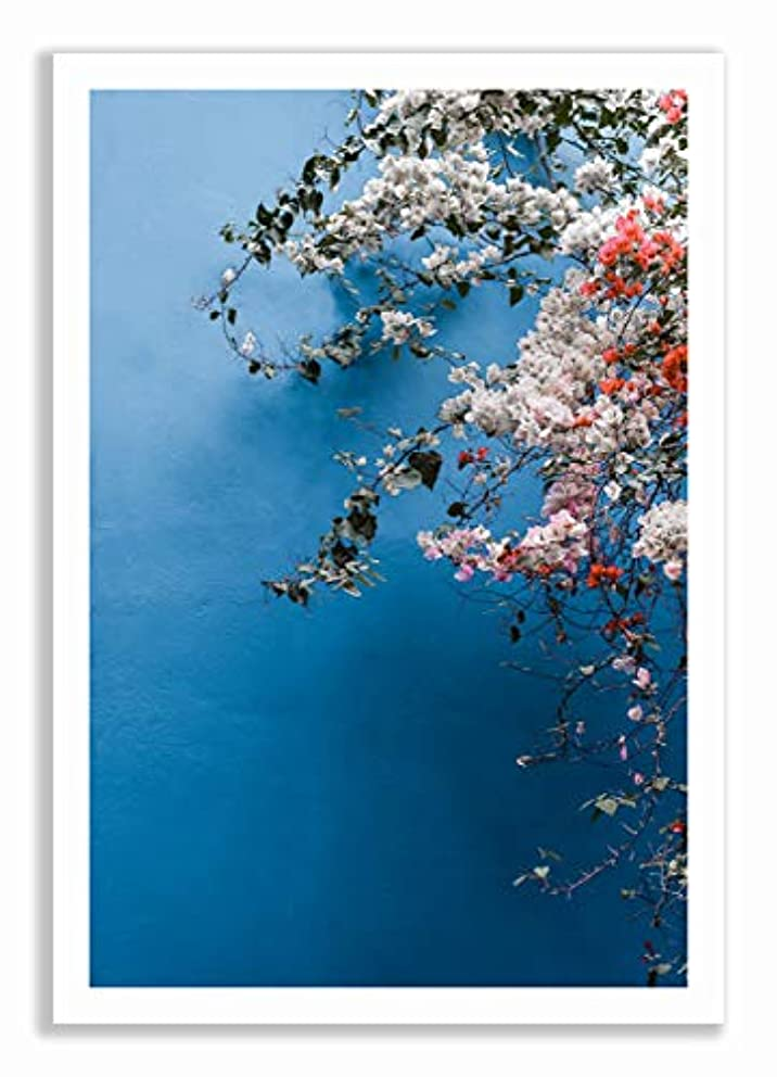 Bougainvillea 1 White Lacquer Wooden Frame with Mount, Multicolored, 40x60