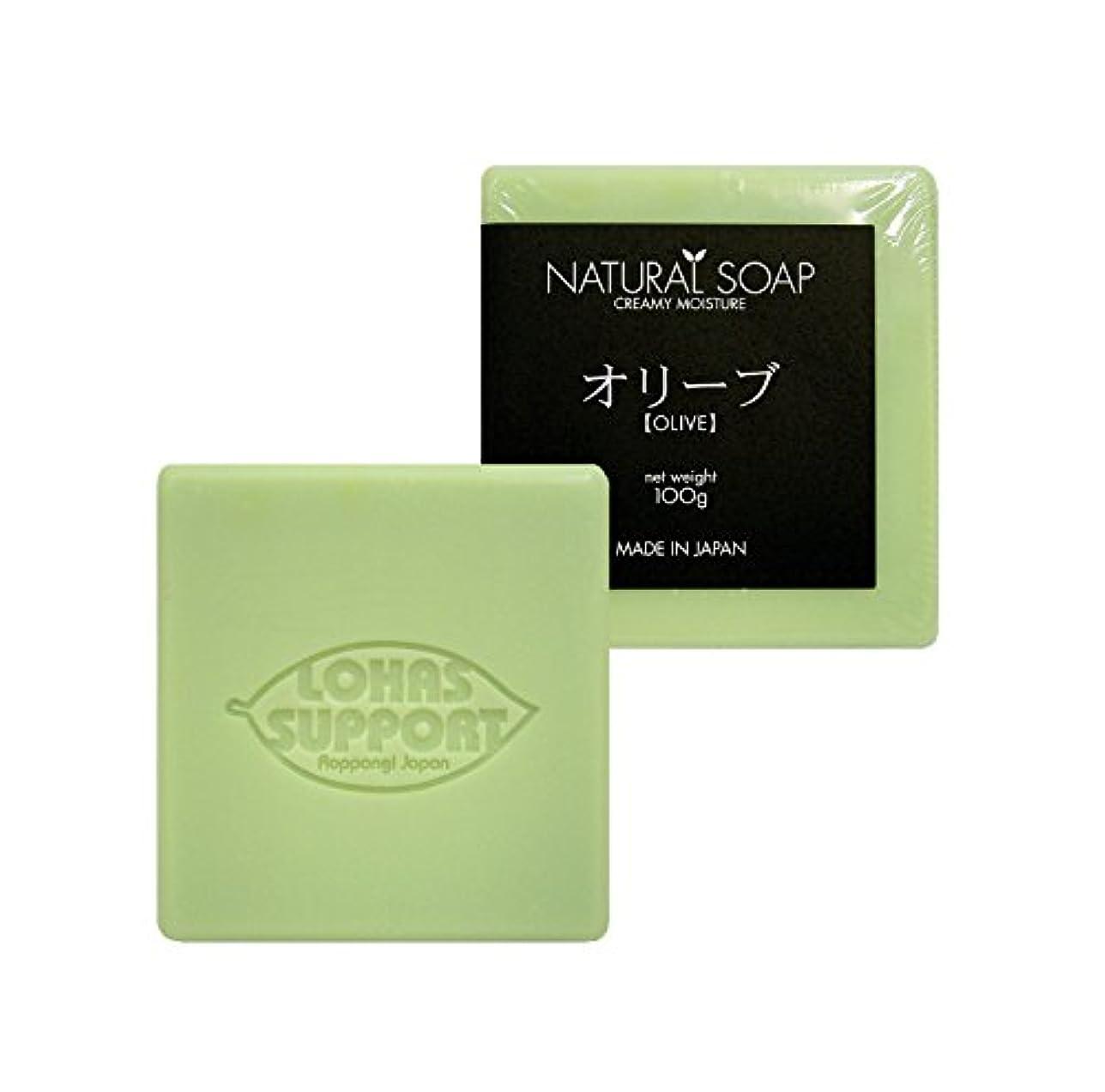 """オーバーフローヒットブリーフケース""""NATURAL SOAP"""